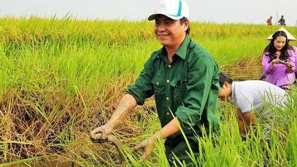 Nông dân có thể lãi 40 triệu đồng/ha từ loại gạo có hợp chất quý ở Quảng Trị