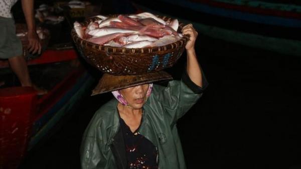 Hà Tĩnh: Có một nghề cực nhọc mang tên 'phu cá' cho đàn bà nơi cửa biển