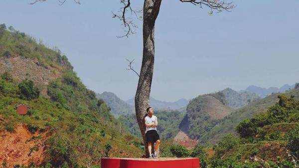 """Tọa độ """"sống ảo"""" ở Sơn La: Trái tim """"lơ lửng"""" trên cây cô đơn có 1-0-2"""