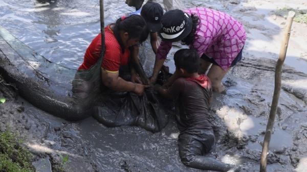 Kiên Giang: Trẻ em bắt cá ngày đầu năm, lấm lem nhưng vui hơn Tết