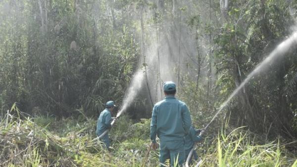 Cà Mau: Căng mình chống cháy rừng ở Khu dự trữ sinh quyển thế giới U Minh Hạ