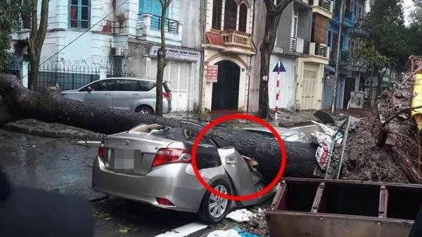 Chiếc xe ô tô bị cây đổ đ.è bẹ.p, biến dạng trong cơn mưa lớn ở Hà Nội