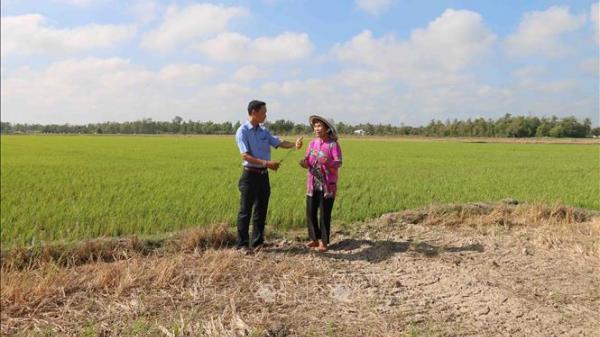 Trà Vinh hỗ trợ nông dân hơn 4 tỷ đồng chống hạn, mặn