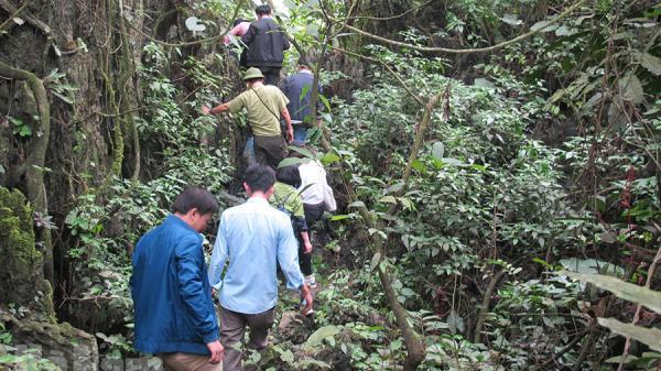Hà Nam: Bảo tồn rừng tự nhiên và tài nguyên rừng quý hiếm ở Kim Bảng