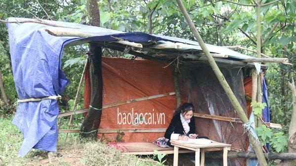 Xúc động những học sinh Lào Cai dựng lều học trực tuyến trong mùa dịch
